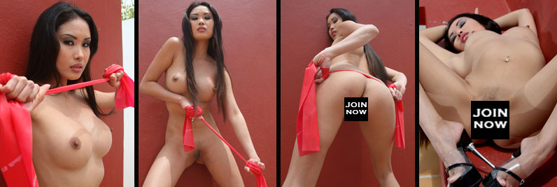 OVER 2 MILLION IMAGES AND 2000 VIDEOS FOR MEMBERS